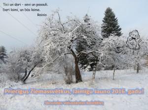 Apsvekums_Skv